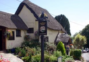 The Thatched Tavern near Torquay